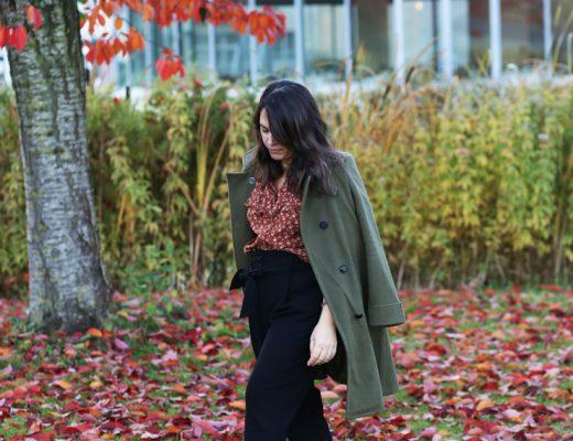 Fall color - Modasic